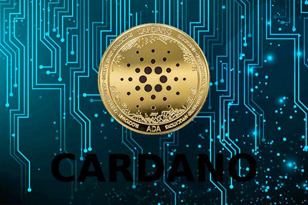 Купить Cardano