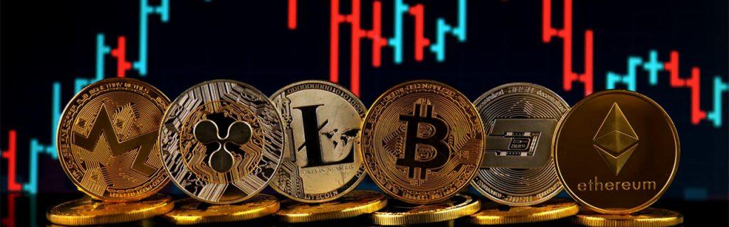 Что можно купить на криптовалюту